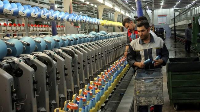 بر اساس آمار سال 1393، سهم بخش خصوصی بر اساس رویکرد مالکیت۴۷.۳۳ و بر اساس مدیریت ۴۵.۷۶ بوده است. فعالان اقتصادی تاکید میکنند اگر سهم اقتصاد معیشتی را از  درصدهای متعلق به بخش خصوصی در اقتصاد کم کنیم، درمییابیم که سهم بخش خصوصی بنگاهی در اقتصاد ایران بسیار کم و چیزی در حدود 20 درصد است.